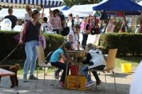 Bauern- und Künstlermarkt_23