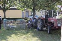 Bauern- und Künstlermarkt_8